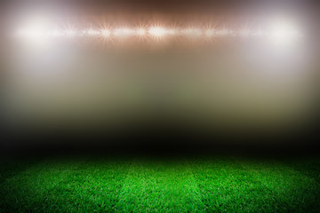 sport field template with grass and stadium lights on the dark background