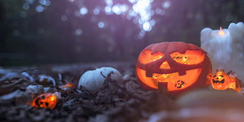 foggy Halloween Pumpkin Background