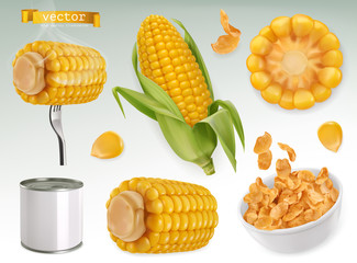 Corn cob, grains, corn flakes. Set 3d vector elements. Package design