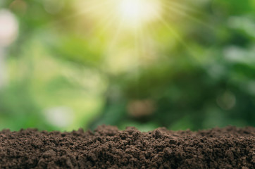 soil for planting with green blur and sunlight background Wall mural