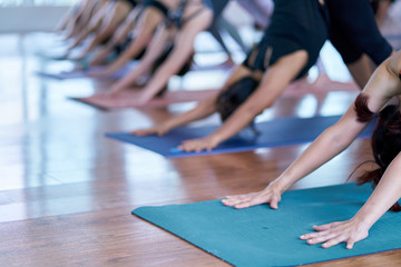 Group of young woman practicing during their yoga class in a gym. fitness, sport, training, yoga and people concept