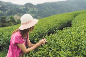 Young asian traveler enjoying tea plantations