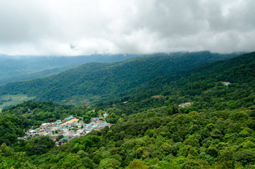 Landscape of Forested Mountain View.