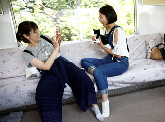 Passenger takes picture of cat in train cat cafe that brings awareness to stray cat culling in Ogaki