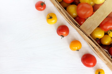 autumn harvest of ripe vegetables/ red and yellow tomatoes in a basket and on a table top view