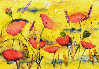 watercolor painting, poppies