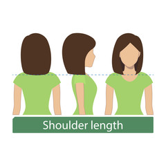 Hair length for haircuts and hairstyles - shoulder length. Vector.