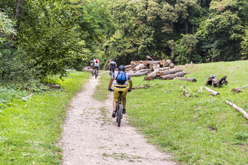 people ride a bicycle through the forest