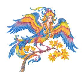 Иллюстрация, акварель. Сказочная птица Сирин, мифологический персонаж.
