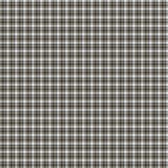 Pattern seamless texture vector