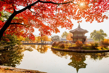 Autumn in Gyeongbokgung Palace, Seoul in South Korea.