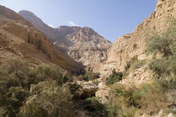 Wadi Arugot River, ein Gedi nature reserve, dead sea, Israel