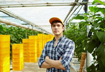 Confident young farmer wearing checked shirt and baseball cap standing at modern spacious greenhouse with arms crossed and looking at camera, waist-up portrait