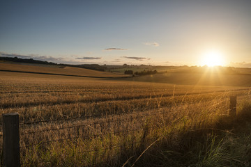 Foto op Plexiglas Grijs Freshly harvested fields of barley in countryside landscape bathed in sunset light