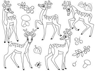 Vector Forest Deers