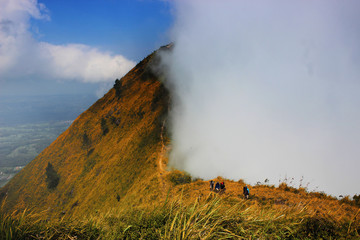 Savanna and misty mount andong