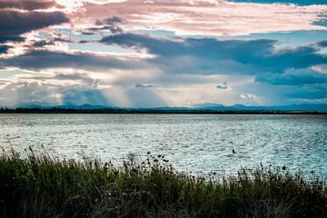 Au bord de l'étang de Canet-Saint-Nazaire