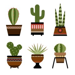 Six cactuses in pots with ornament