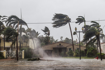 Hurricane Irma and tropical storm at Fort Lauderdale, Florida.