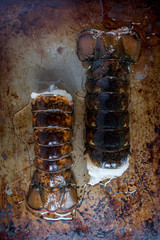 lobster tails vertical on metal background