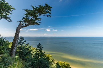 Sandy beach and cliffs on Baltic sea coast, Poland, Wolin island Wall mural