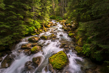 Wall Murals River I rushing river flowing though the North Cascades National Park in Washington state