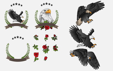 Vector set hand painted eagle and red roses. For graphic design, signage,icon and text