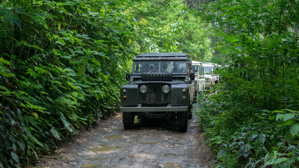 4x4 vehicle in the middle of the forest