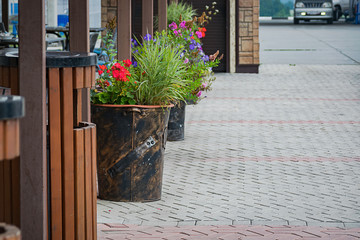 Summer flowers decoration at a roadside cafe
