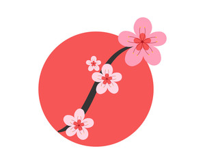 pink cherry blossom flower plants nature icon image vector