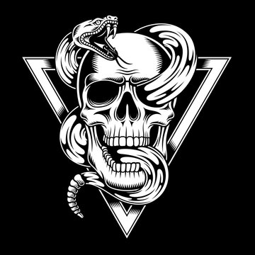 Skull with Snake Vector Illustration
