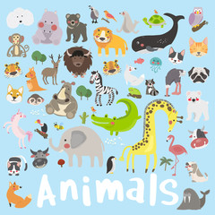 Illustration drawing style set of animal