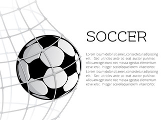 Soccer ball in net or goal design
