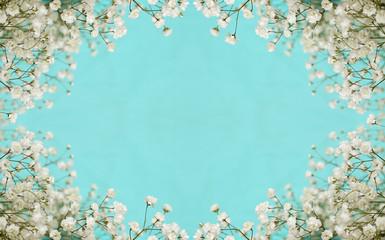 White flowers frame
