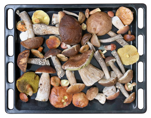 Noble delicacy fresh forest mushrooms on a black metal baking sheet.