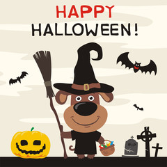 Happy Halloween! Greeting card or banner for Halloween with funny puppy dog in cartoon style. Puppy dog in witch hat and with broom on background of pumpkin and cemetery.