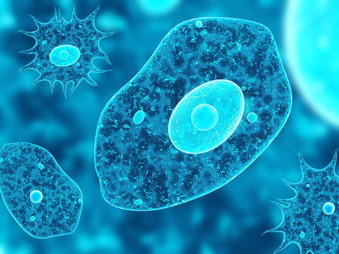 Amoebas on abstract blue background