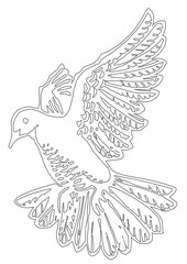 Pigeon Bird Outline Picture