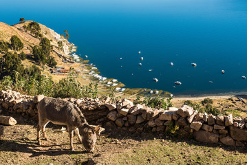 Isle de Sol on Lake Titicaca in Bolivia Fototapete