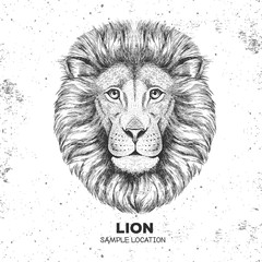 Hipster animal lion. Hand drawing Muzzle of lion