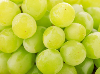 green grapes background