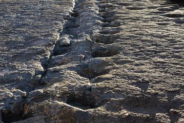 Real dinosaur footprints, Torotoro National Park, Potosi, Bolivia