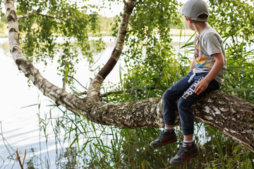 the boy sits on a tree by the lake