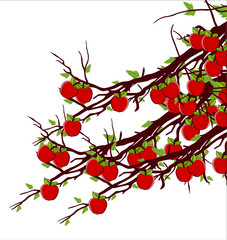 Fresh Apples Branches Vector