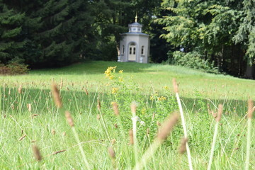 chapel in a field with trees