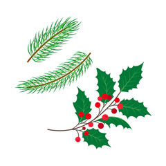 vector flat holly tree, mistletoe or ilex branch with leaves berries, spruce branch set. Isolated illustration on a white background. Christmas cards, banners of presentation decoration design symbol