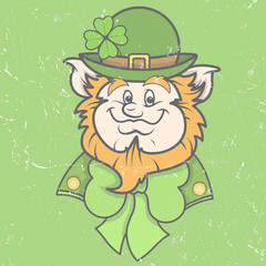 Happy Young Leprechaun Face Expression