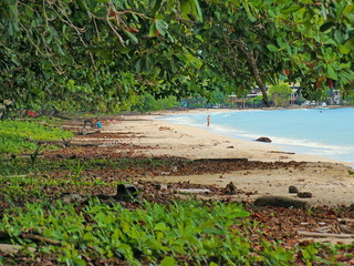 Tropical beach in the national park of Cahuita, Caribbean sea, Costa Rica, Central America