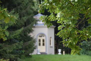 Chapel between the leaves in the forest