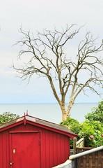 mer Bornholm rouge Danemark